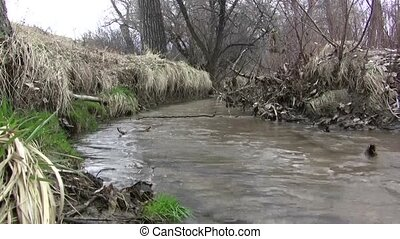 Bending Early Spring Creek - A look at a creek in the early...