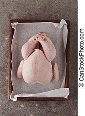 raw chicken - prepared raw chicken