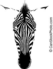 Zebra head from the front consisting of black lines on a...