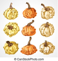 Big set of pumpkins different colors isolated on white background