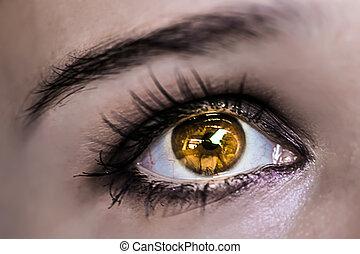 Yellow Eye Makeup. Beautiful Eyes Make-up. Macro - Brown Eye...