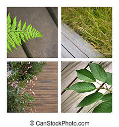 Terraces - Collage of plants on wooden terraces