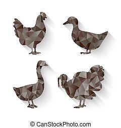 domestic fowl symbol - domestic fowl triangle symbol -...