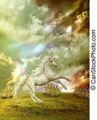 horse - white horse in the field in stormy day