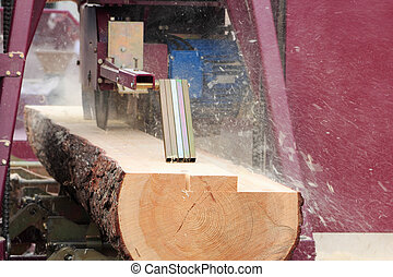 sawing boards from logs - Sawing boards from logs with...