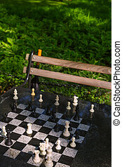 Chess chessboard in Washington Square Park NYC - Chess...