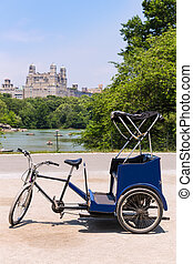 Central Park Manhattan The Lake rickshaw bike NY - Central...