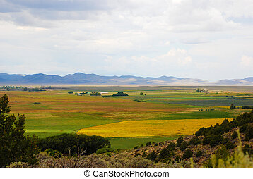 View of Farmland with Distant Horizon - View of farmland...