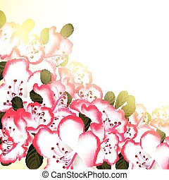 Beautiful flower background with white pink flowers