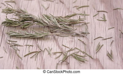 Rosemary Herb Sprigs and Leaves - Close up dolly shot of...