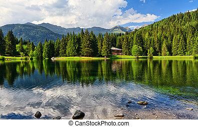Lago dei Caprioli - Roe deer lake - summer view of Caprioli...