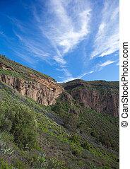 Gran Canaria, Caldera de Bandama after winter rains - Gran...