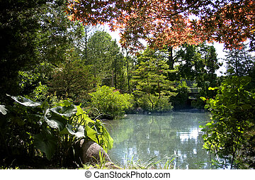 Small pond in the Japanese garden - Beautiful autumn trees...