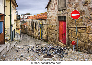 Alley with Pigeons - Vila Nova de Gaia, Portugal alley scene...