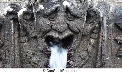 Stone Head Fountain Detail - Video clip showing detail of...