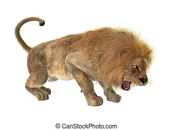 Angry Lion - 3D digital render of an angry roaring male lion...