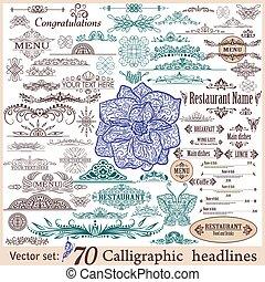 Vector set of vintage design elements. - Vector set of...