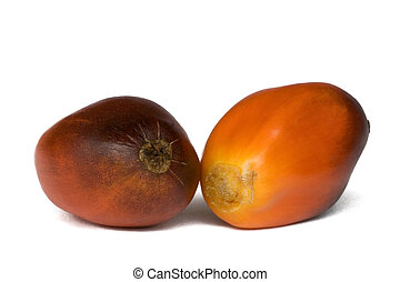 Oil Palm Fruits - Isolated macro image of oil palm fruits...