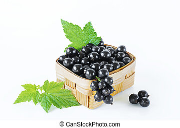 Blackcurrant berries isolate leaf green fruit plants