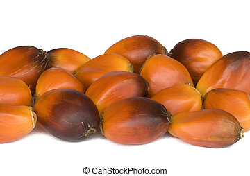 Oil Palm Fruits - Isolated macro image of oil palm fruits....