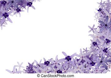 Purple flowers background - Image of purple flowers...