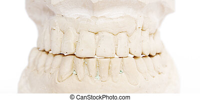 dental imprint - dental impression isolated against white...