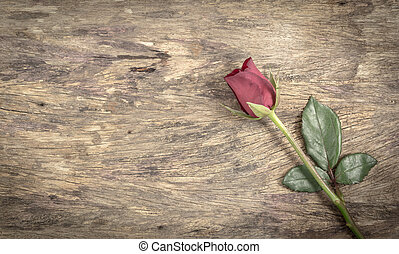 Shabby Rose - Red Rose on a wooden background,Old Style