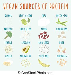 Vegan sources of protein. Vector EPS 10 hand drawn...
