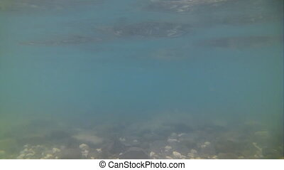 biggest in Turkey salt lake Van underwater carbonate lake -...
