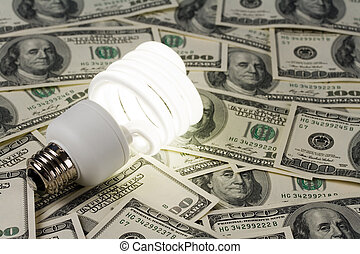 Compact Fluorescent Lightbulb and dollar clsoe up