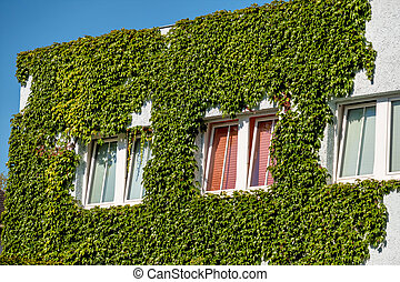 planted house facade, symbol of insulation, isolation,...