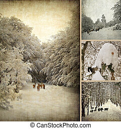 Aged winter photo collage