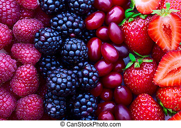 strawberries, dogwood, blackberries and raspberries, top...