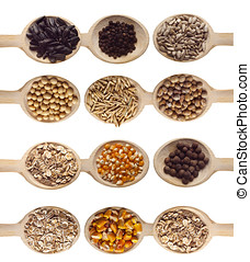 Seeds - Different type of seeds on wooden spoon