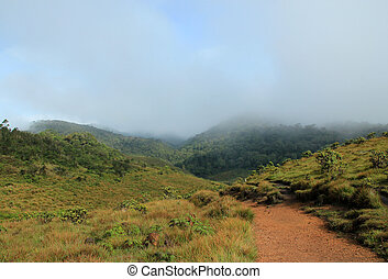Horton Plains National Park, Sri Lanka