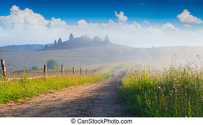 Beautiful summer landscape in the mountain village with...