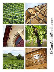 Wineries and vineyards on a collage