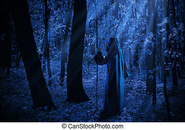 Witch in the moonlight forest - Witch at night in the...