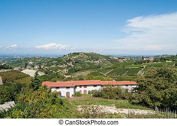 viña,  Piemonte, Italia, colinas