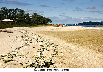 Beach on Long Island, NY