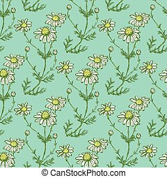 Daisy flower in sketch style, vector seamless pattern