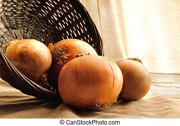 onions out of a basket on a table cloth tablecloth - onions...