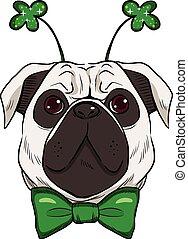 St. Patrick Pug Dog