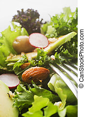 Salad - Fresh mixed green salad with avocado close up