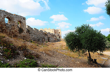 Fortress - View To Ruins Of The Crusader Fortress Antipatris...