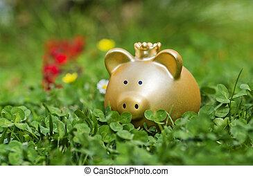 Goldenes Sparschwein auf einer Wiese - Golden piggy bank is...