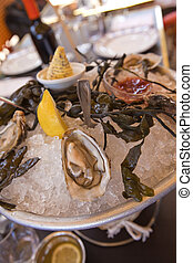 Oysters - Plate of oysters in a restaurant