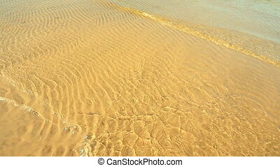 beach with yellow sand and clear waves