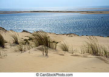 Dune of Pilat, France is the tallest sand dune in Europe