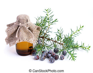 Juniper branch and berries with pharmaceutical bottles....